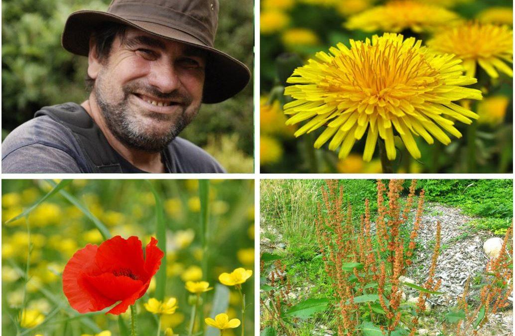 FORMATION : G. DUCERF – Diagnostiquer son sol grâce aux plantes Bio-indicatrices 23 septembre 2019 (61)
